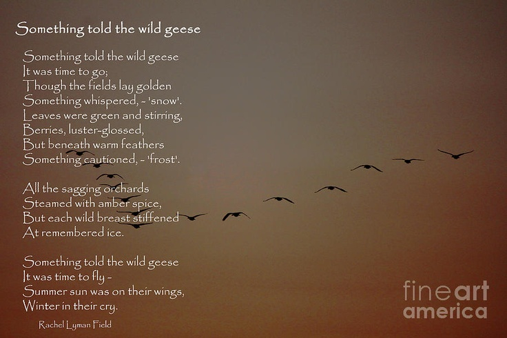 Something told the wild geese -Rachel Lyman Field