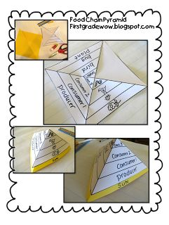 First Grade Wow: Food chain pyramid foldable - don't need to buy the unit - students can create their own pyramid foldable!