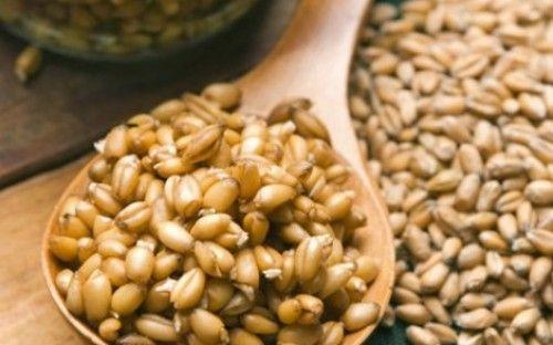 10 τρόφιμα φυσικά… βιάγκρα -Οι τροφές με τις μεγαλύτερες αφροδισιακές ιδιότητες [εικόνες] http://biologikaorganikaproionta.com/health/176721/