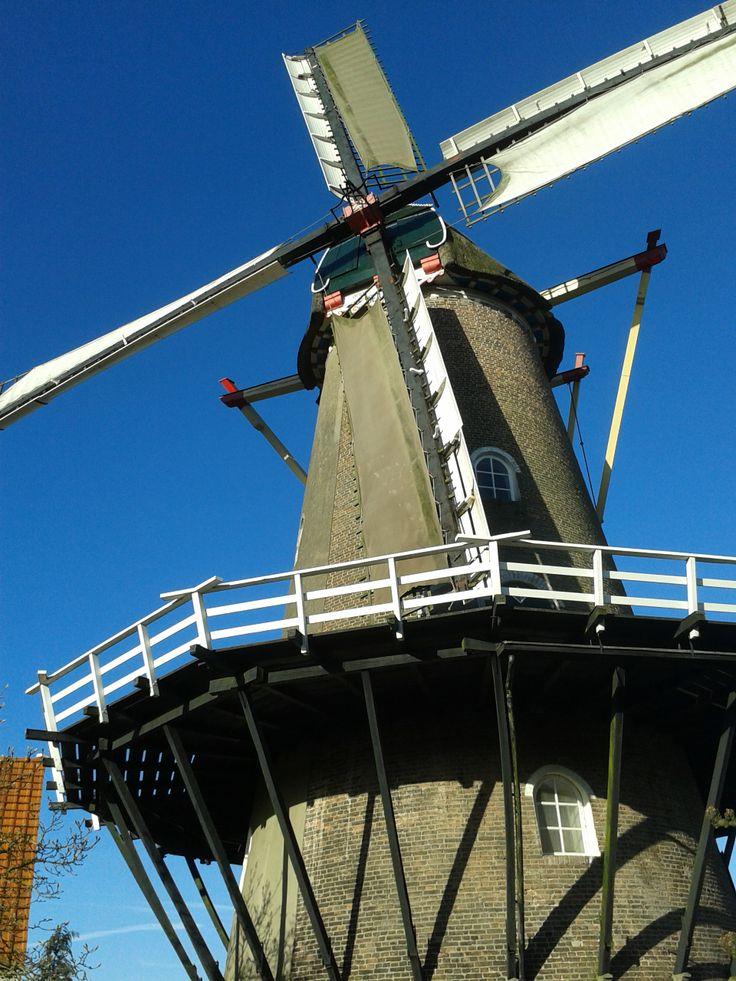 Windmill 'De Vlijt', Wageningen