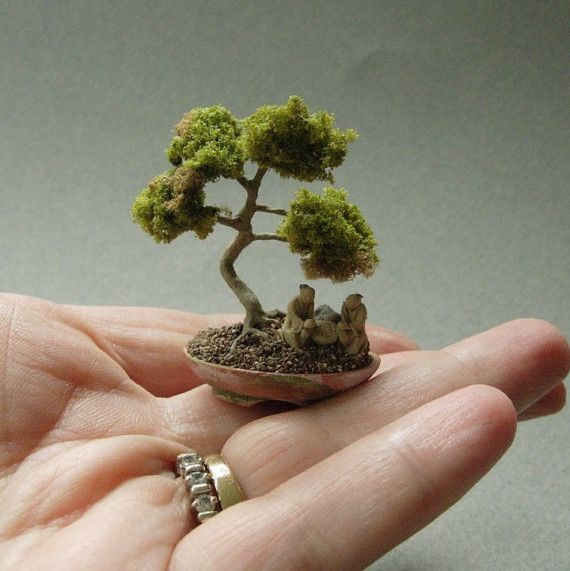 Dollhouse Miniature Bonsai Tree Your Fairy Gardens Project Photos