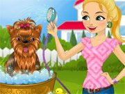 Free Online Girl Games, Work as a groomer and take care of some adorable puppies in Doggy Day Spa Dressup!  You'll have a chance to wash and clean each dog, and then dress it up in a cute outfit for its owner!  Don't forget to pick out an outfit for yourself as well!, #doggy #day #spa #dressup #girl #pet #animal