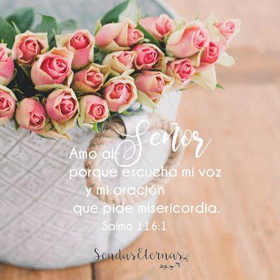 """""""Amo al Señor porque escucha mi voz y mi oración que pide misericordia."""" Salmo 116:1 NTV  https://sendaseternas.blogspot.com.es/2017/05/versiculos-biblicos_22.html  #Versiculobiblico #Biblia #Señor #oración #amor #misericordia #Sendaseternas"""