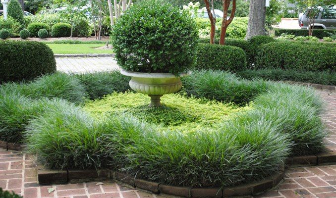 10 images about Gardens Ornamental Grasses on Pinterest