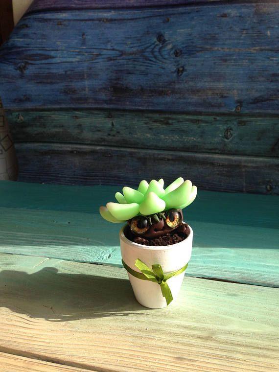 HANDMADE SUCCULENT Little succulent Ooak Fantasy Creature Doll