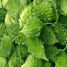 Indian #Vegetable Seeds   Buy #Seeds Online #India   #Vegetable Seeds #Online India http://kraftseeds.com/vegetable-seeds/indian-vegetable-seeds