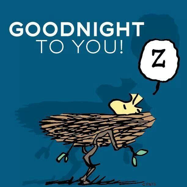 Good Night To You! ZZZZZ