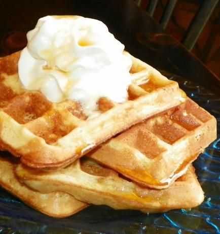 Belgian Waffles. Photo by Baby Kato I think that these are the best I've tried so far...quick and easy, but so light and fluffy!