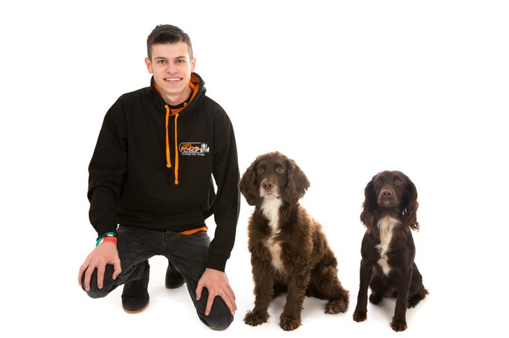 When Sprocket & Misty met Liam | Barnstaple Studio