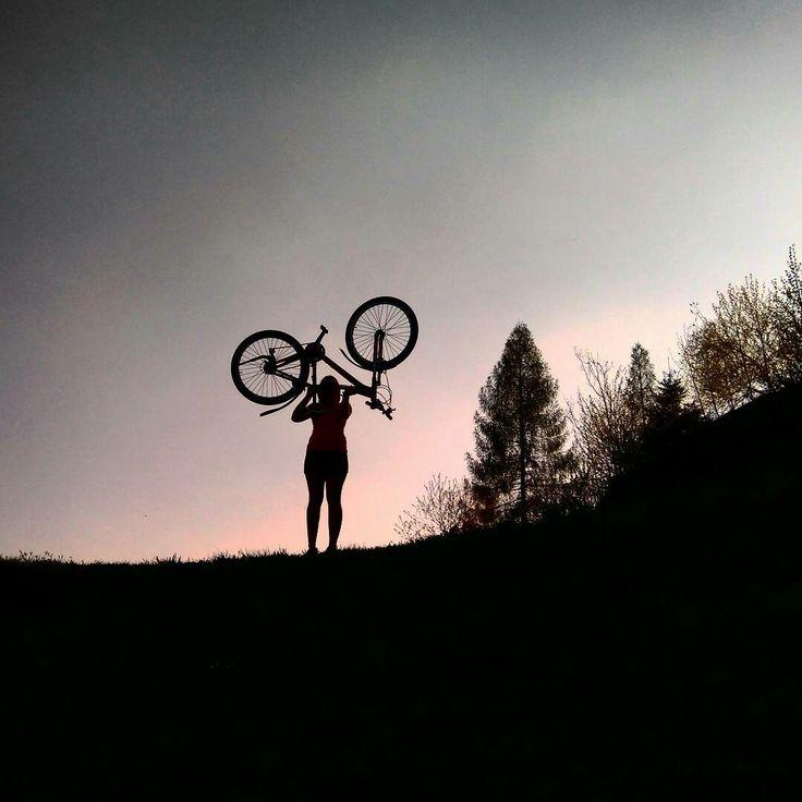 #Bicicleta #summer #sky #bike #shilouette #forest