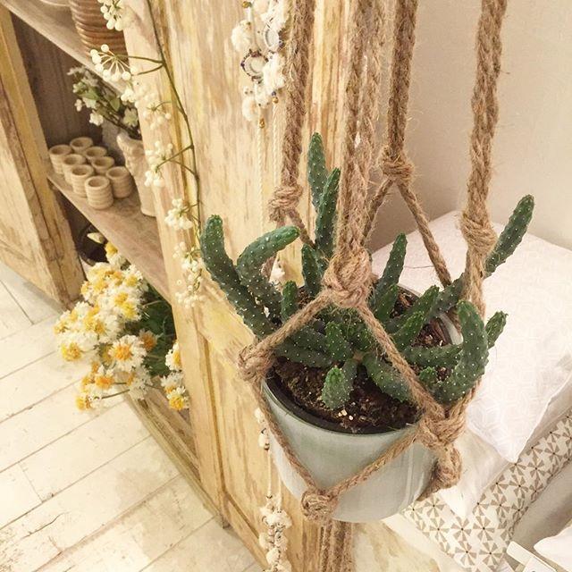 Ook leuk te combineren met macramé. #viacannella #cuijk #woonwinkel #plant #plantenhanger #macrame