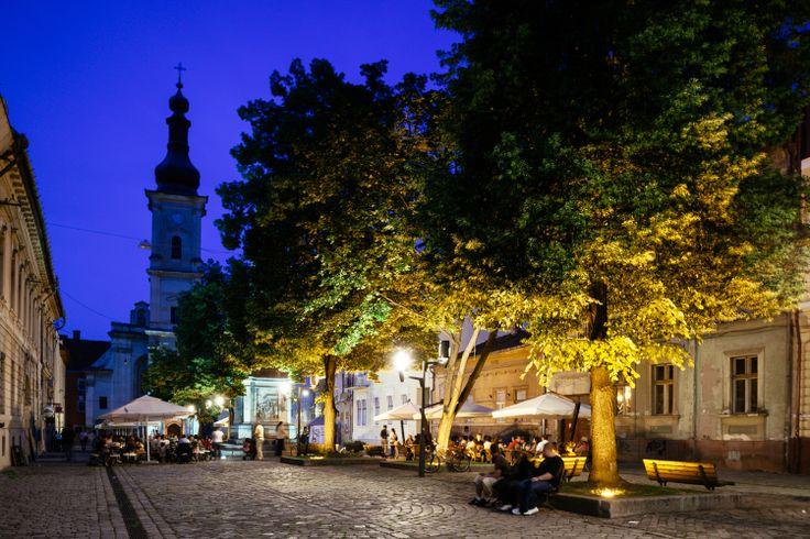 Camino - restaurant, (Place du Musée) Cluj-Napoca, Romania