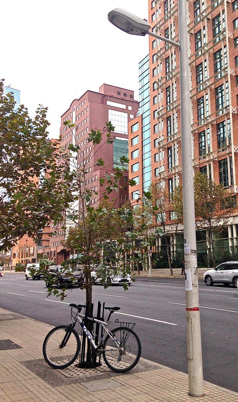 Mi bici estacionada en avenida Vitacura, frente al hotel Intercontinental. Vitacura, Santiago, Chile