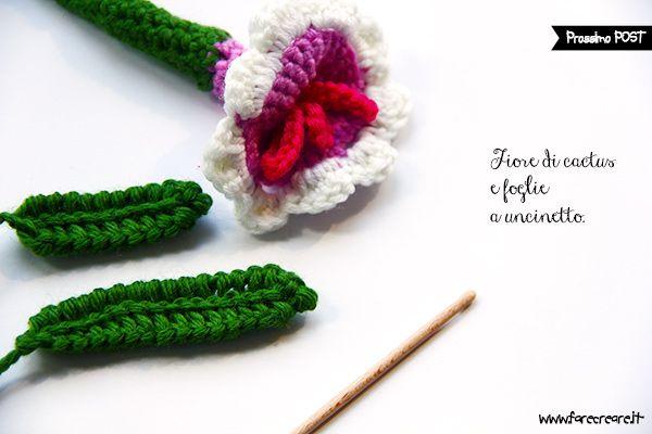 fiore-pianta-grassa-dettaglio_600.jpg (600×400)