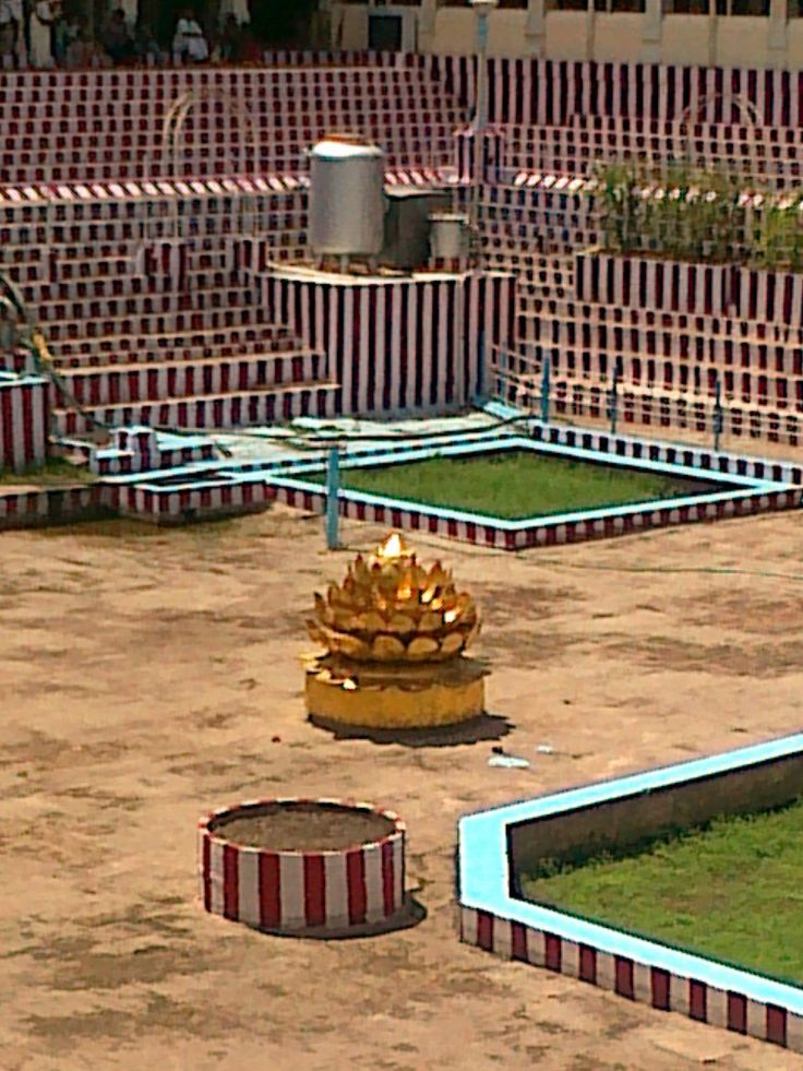 Golden Lotus Madurai Meenakshi Temple Colour