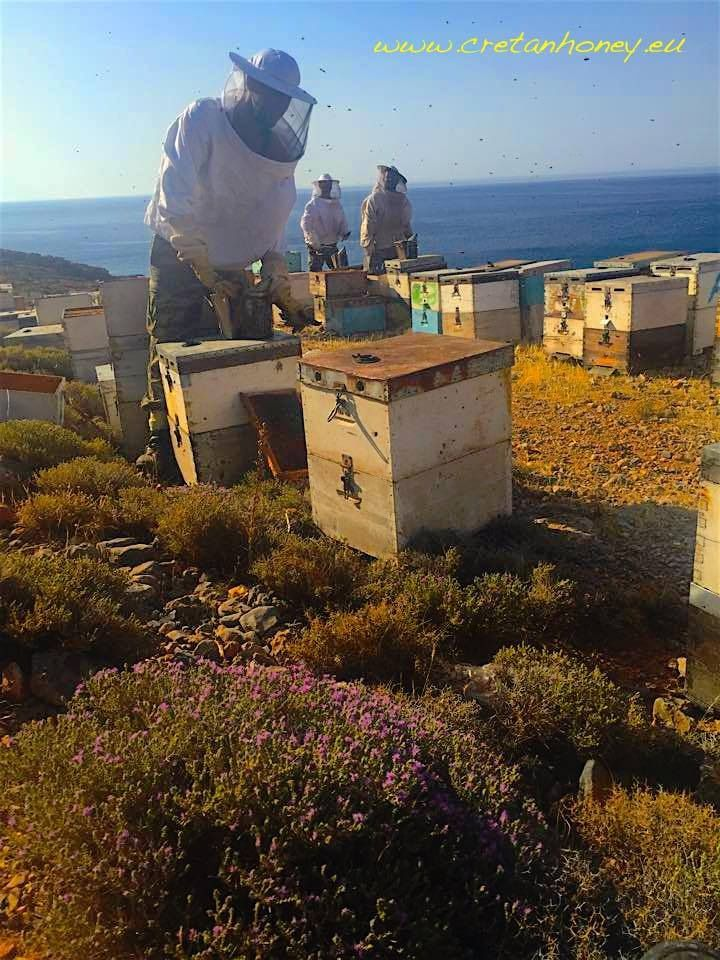 Harvest in Sfakia
