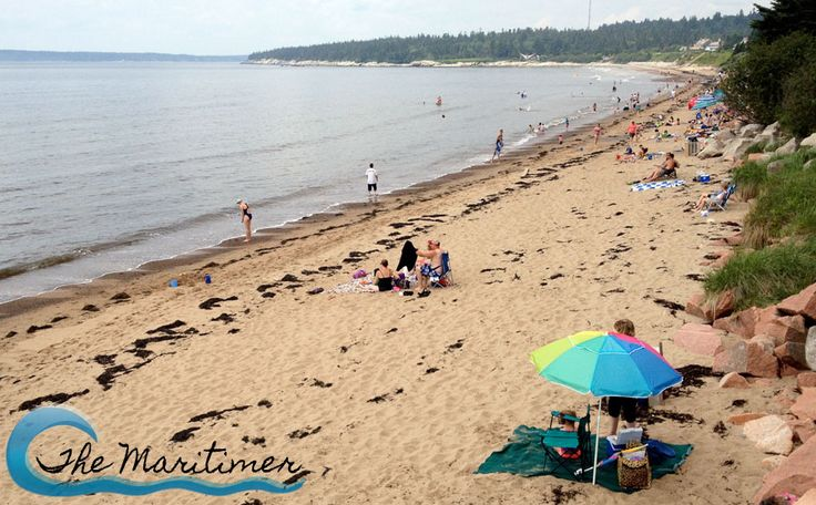 New River Beach Provincial Park on the Bay of Fundy