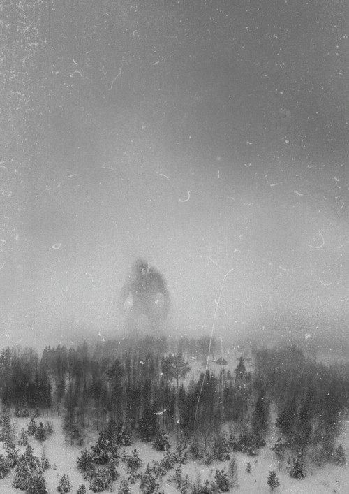 The Great Norwegian Mountain Troll. It was taken in December 1942 by the crew of an RAF recon flight 300 miles north of Berge.