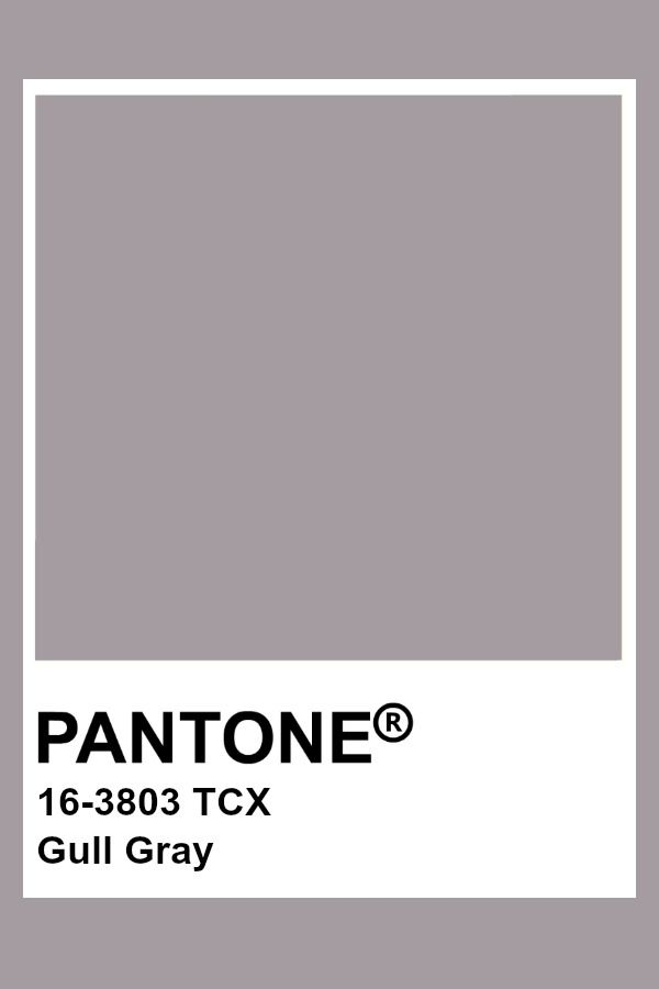 Pantone Gull Gray With Images Pantone Colour Palettes