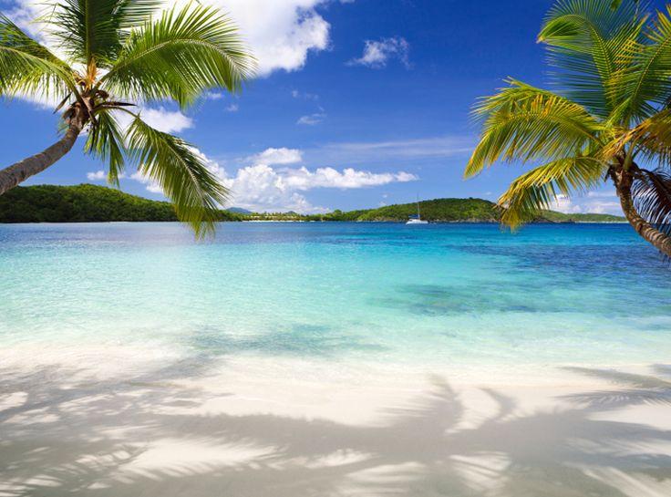 Bei ebookers.ch findest du zahlreiche Angebote für Reiseziele rund um den Globus.  Lass dich von den attraktiven Angeboten inspirieren und buche deine nächsten Ferien: http://www.ich-brauche-ferien.ch/sommerferien-zu-unschlagbaren-preisen/