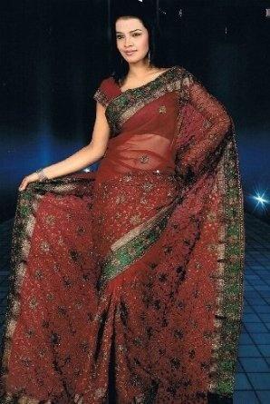 Contemporary Indian Wedding Saree (Sari) Collection