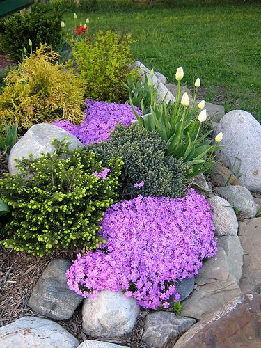 I'd like this for my rock garden...