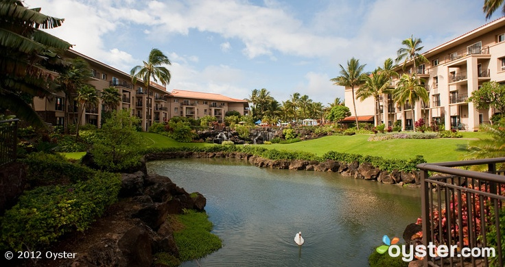 Great Travel site...Grounds at the Marriott's Waiohai Beach Club: A Marriott Vacation Club Resort