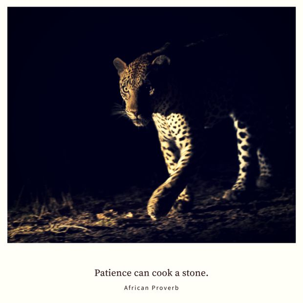 Patience can cook a stone. – African Proverb