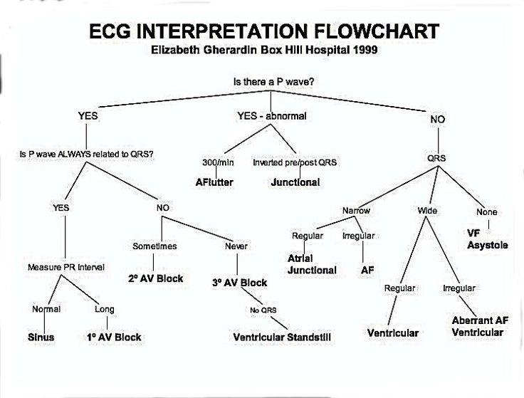 Ekg Charts Erkalnathandedecker