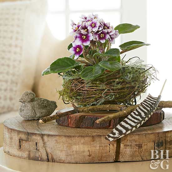 A decorative bird's nest is the perfect vessel for small plants. Pair with other woodland accessories, like rustic wood slices, twigs, and feathers, for a simple decoration. Pro tip: Keep the look green longer -- and create less mess -- by choosing a faux plant.