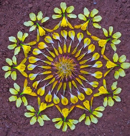 """Mandala é a palavra sânscrita que significa círculo,uma representação da relação entre o homem e o cosmo.A artista americana Kathy klein cria mandalas depois de um estado devocional meditativo.Enquanto sua mente é mantida em mantra,ela recolhe flores e objetos naturais e depois transforma-os em mandalas.As peças são chamadas de """"danmalas"""" (o doador de grinaldas, em sânscrito).Depois de formadas e fotografadas,a artista deixa as mandalas onde as criou,como um presente para quem encontrar."""