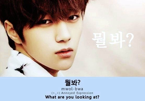 What Are You Looking At? ㄱ_ㄱ