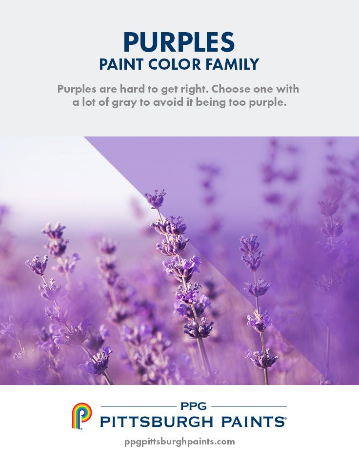 17 best off white paint colors images on pinterest color on good wall colors for office id=30925