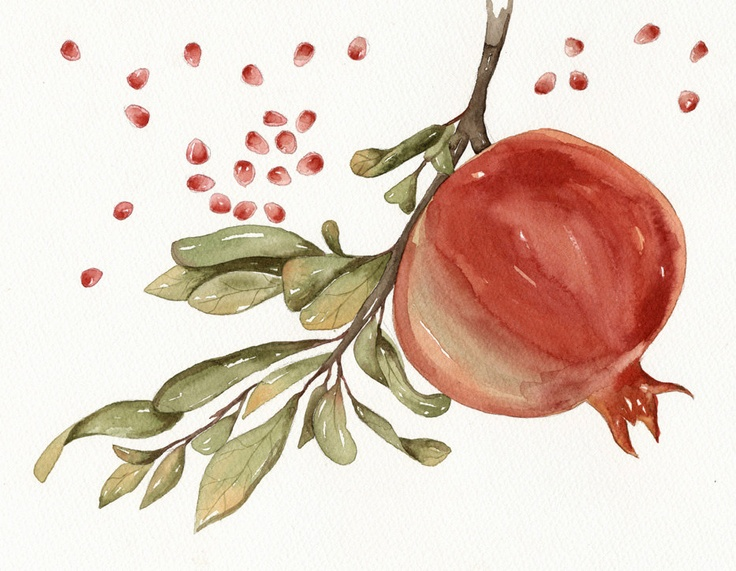 Pomegranate Watercolor Art Original Painting by by lorisworld