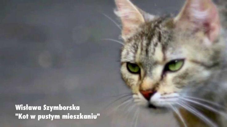 Jolanta Wolters czyta... KOT W PUSTYM MIESZKANIU Wisława Szymborska