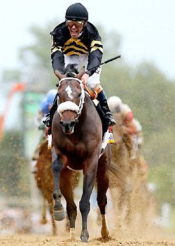 Oxbow |138th Preakness Stakes winner at 15-1 odds | ridden by Gary Stevens