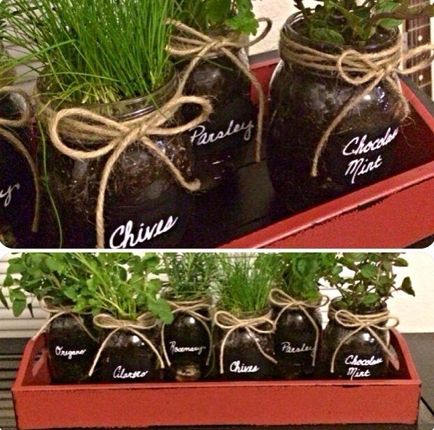 Grow herbs indoors in mason jars