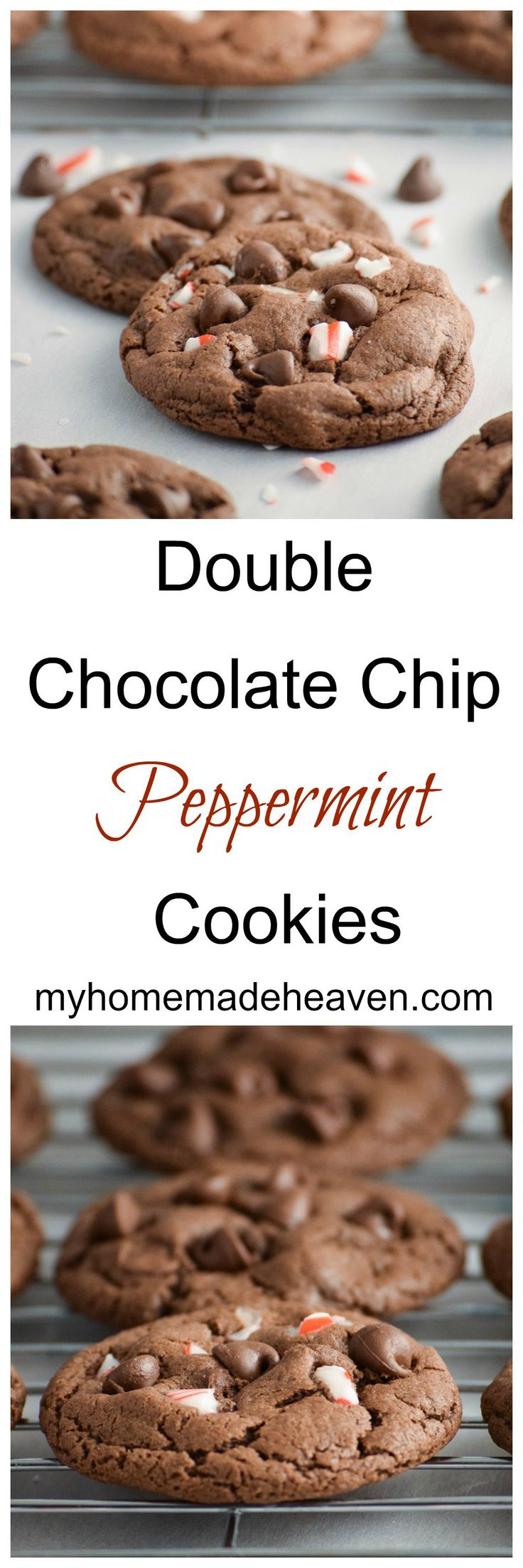 love these cookies! Double Chocolate Chip Peppermint Cookies is a ...