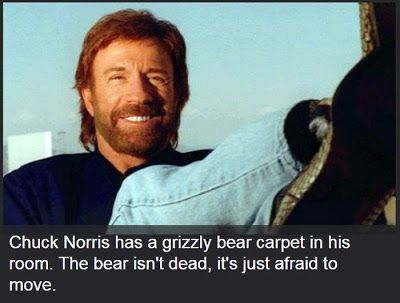 http://Papr.Club - Another cool link is http://Papr.Club  19 Chuck Norris Facts 2Tout2Rien