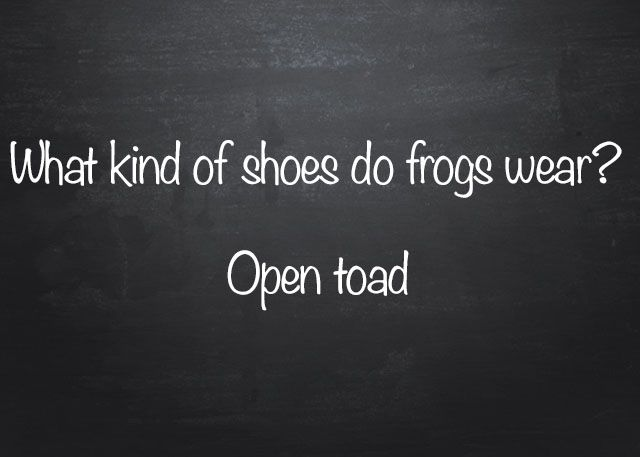 What Kind Of Shoes Do Frogs Wear Memes