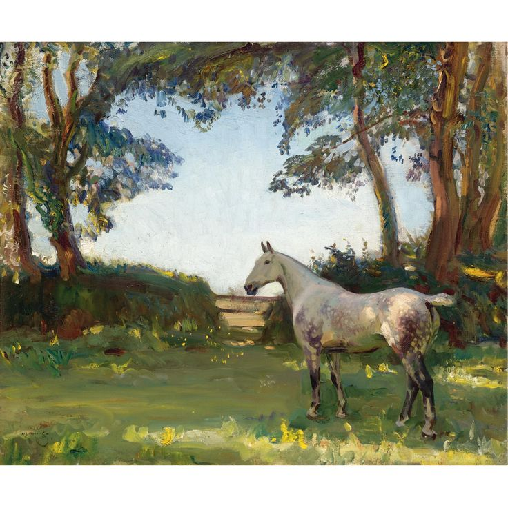 """The Grey Mare"" by Sir Alfred James Munnings. Visually stunning. The horse is depicted as a living being rather than an anatomical study. Love the purple in the grey coat."