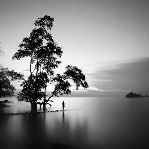 Черно-белые пейзажи