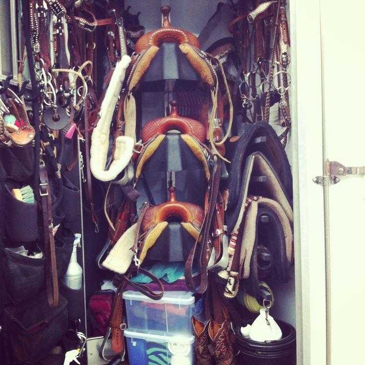 Megan Etcheberry From Rodeo Girls Barrel Racing Pro Rodeo Barrel Racing Tack Dream Horse Barns