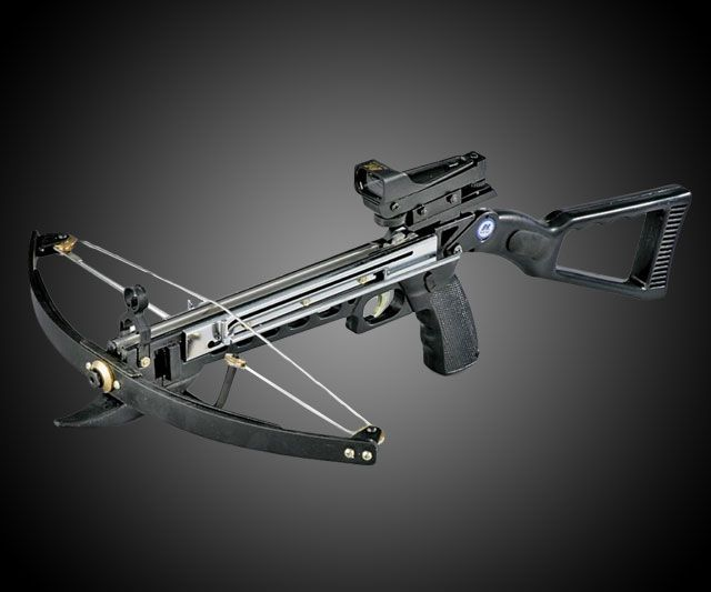 NcStar Crossbow with Red Dot Sight | DudeIWantThat.com