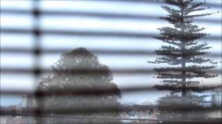 Correspondencia Audiovisual. Título Andes. La percepción visual que capté con el lente fue el contraste de la Ciudad rodeada de la Cordillera de los Andes hacia el oriente, se observa el paisaje urbano en contraste a la supervivencia de un casi único árbol. Incorporé los sonidos de algunas aves nativas de los andes y el silencio de las calles al amanecer. La textura de la persiana agrega efectos de movimiento como parte de la composición.