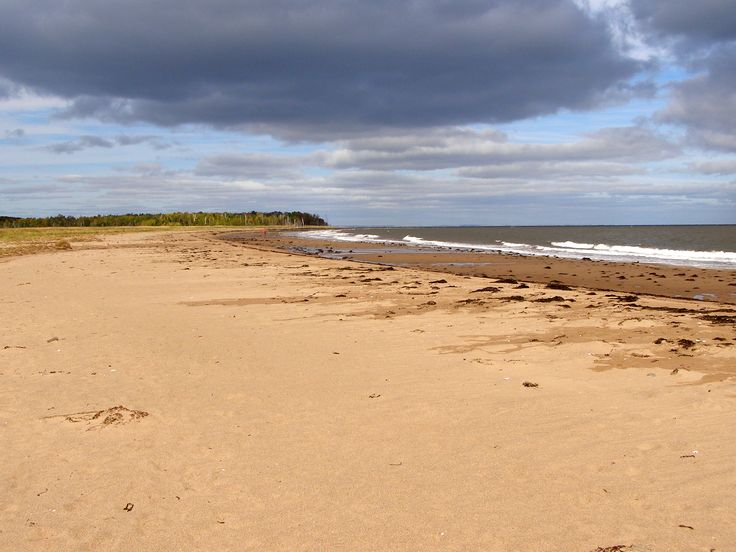Caribou-Munroes Island Provincial Park in Pictou County is a wonderful place for a coastal hike. Read about it by clicking on this pin.