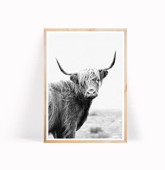 Highland Cow Print Wall Art Printable Art Black And White Etsy Highland Cow Print Cow Art Print Cow Wall Art