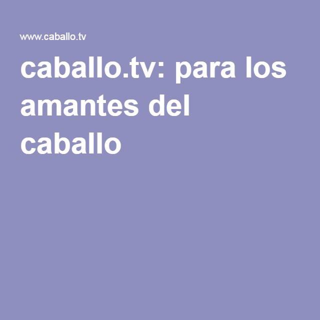 caballo.tv: para los amantes del caballo