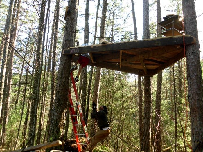 Simple treehouse designs free woodworking plans for Tree house ideas plans