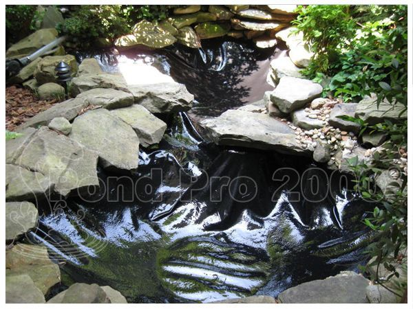 Your pond is your property not only by means of money but you keep your emotions with its lining your wish to see it beautiful and make your house beautiful always exists in it and your dreams of joy breaths in it .Underneath the gorgeous plant life your pond lies the product that keeps it functioning effectively. That is pond liner and especially fish pond liner.
